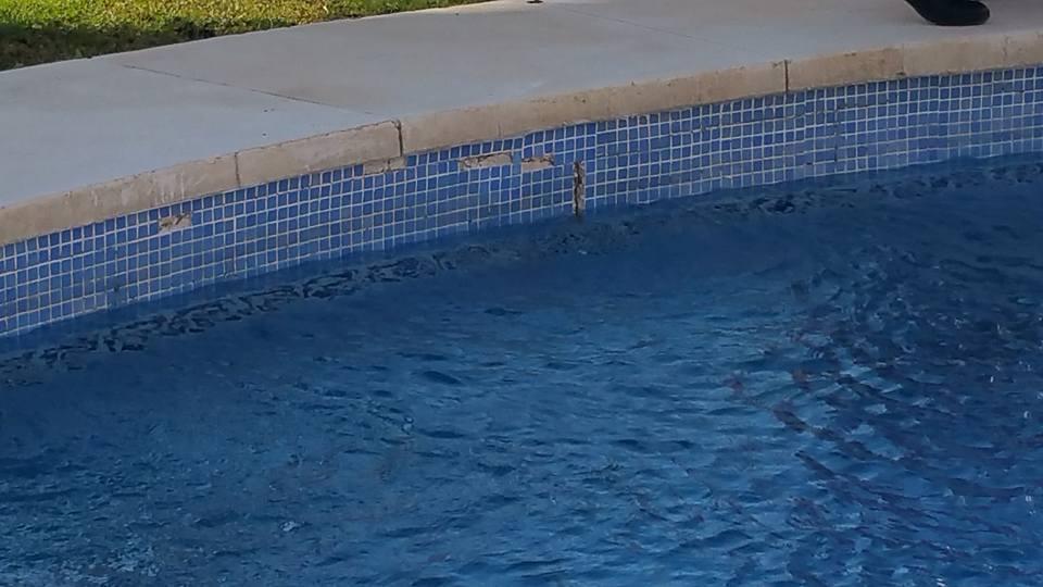 Reparaci n fugas piscinas en m laga piscinas m laga for Construccion de piscinas en malaga